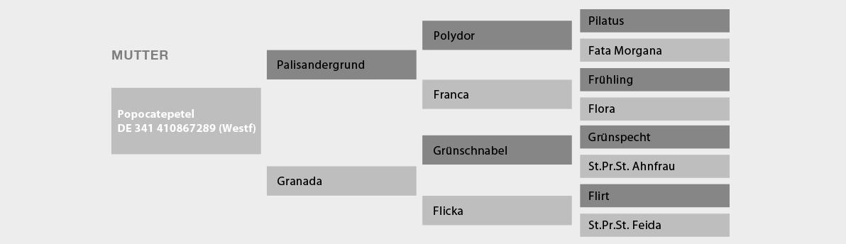 Nachkommen Polydor